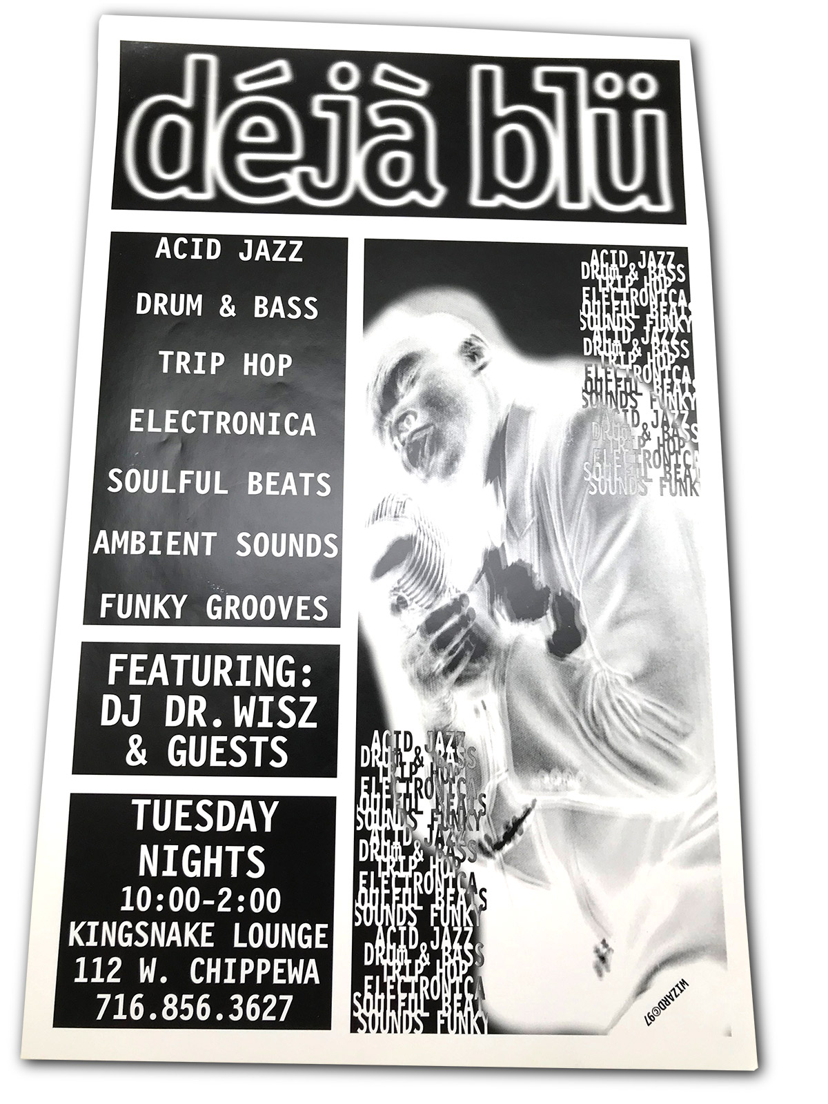 deja blu, dejablu, d, dr wis, dj scotty, mark wisz, buffalo nt, rock poster design, kingsnake lounge, buffalo, ny